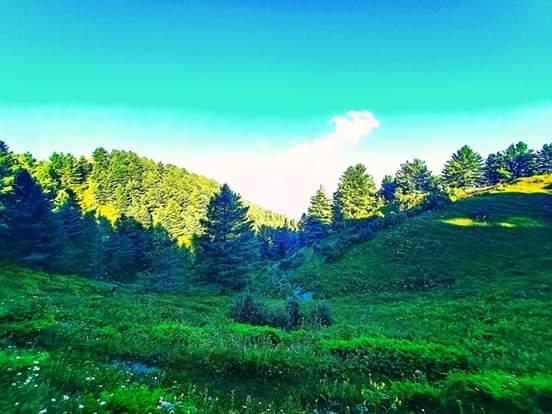Galyat  Pakistan Beautiful Places in Pakistan beauty of Pakistan