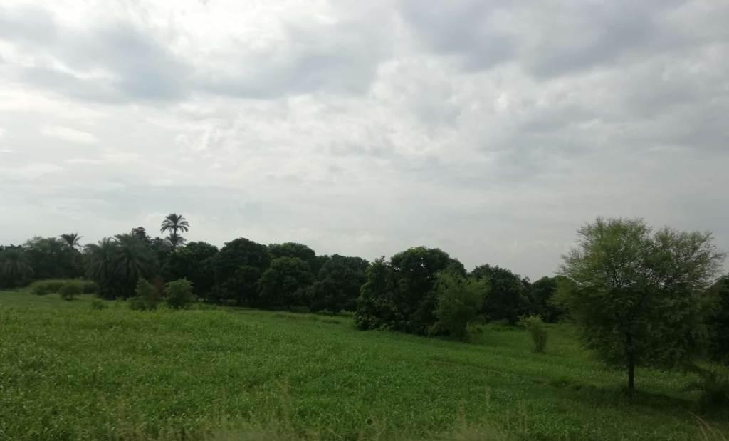 Beautiful places in Pakistan, greenery