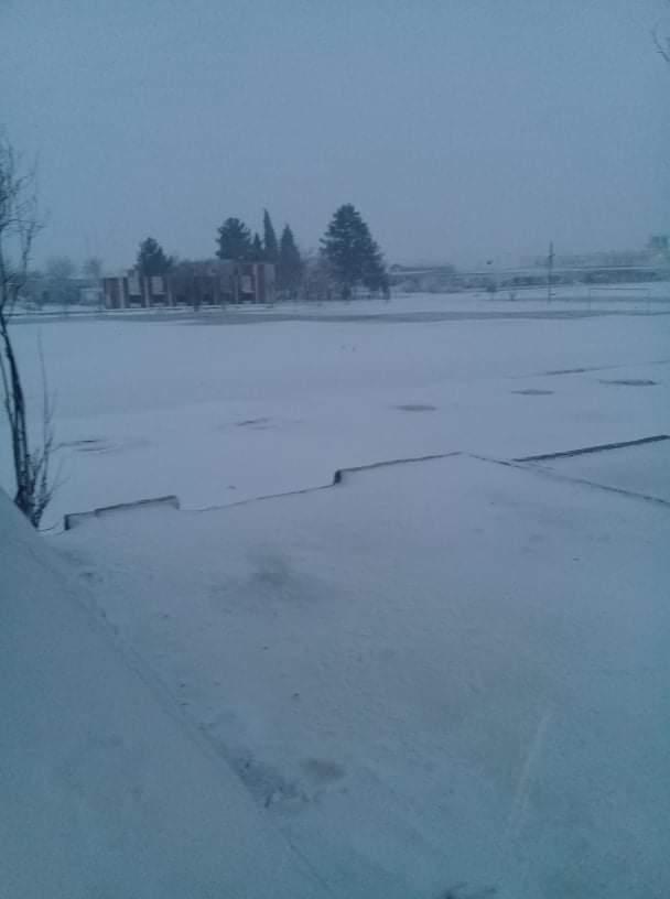 Snowfall Photography