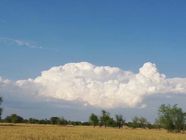 Images of Cumulus clouds