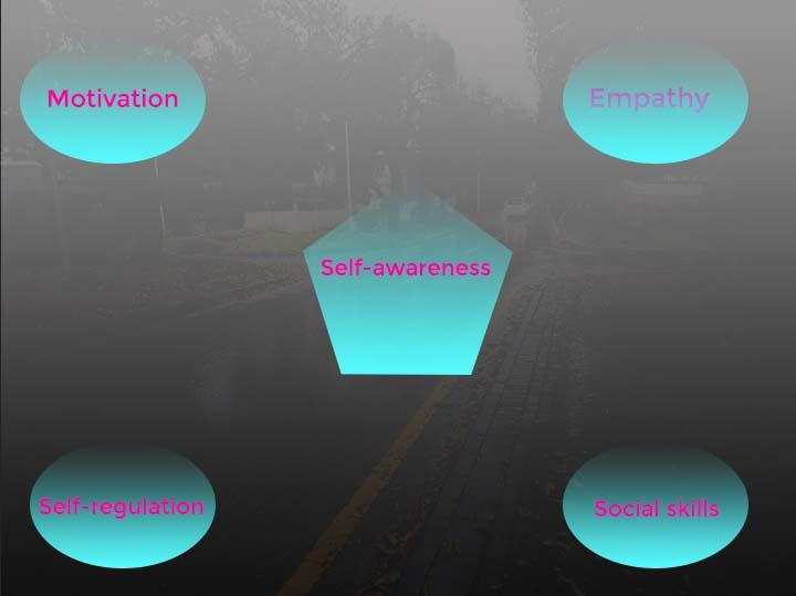 Psychologist Daniel Goleman Emotional Intelligence framework